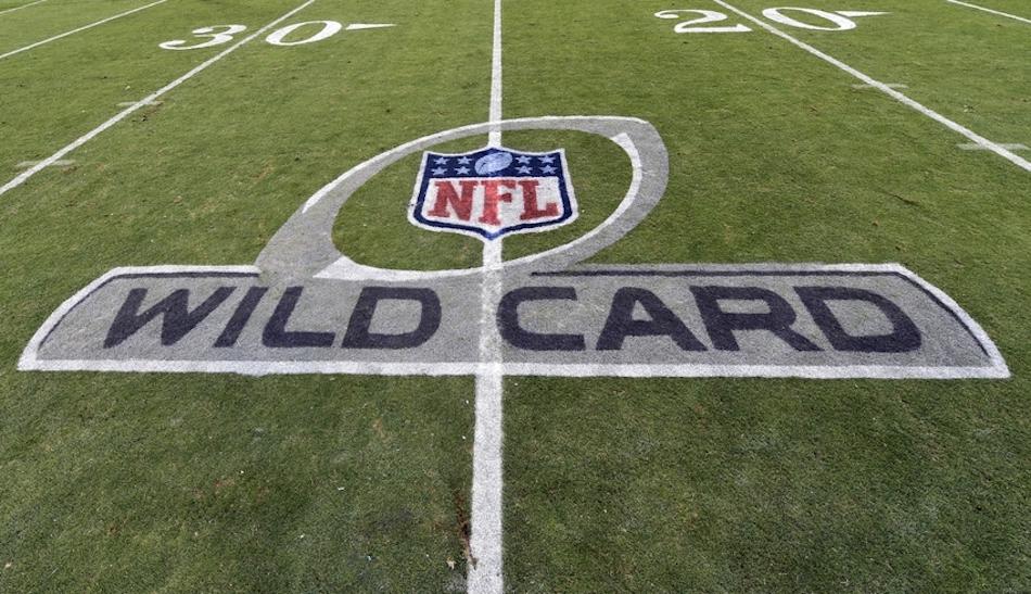 nfl-nfc-wild-card-playoff-arizona-cardinals-carolina-panthers